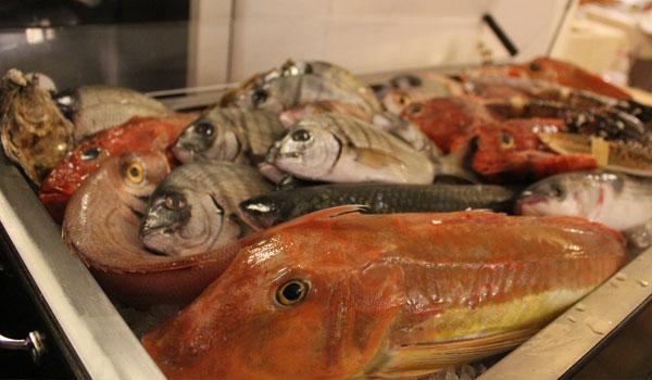 Il ristorante di pesce, la nostra cucina di mare | La Scarpetta Hostaria